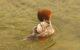 Vincent-FRADET-Harle Bièvre-Mergus merganster mâle- Annecy 25 fev 2013